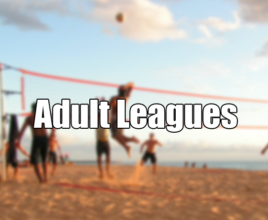 adult-leagues